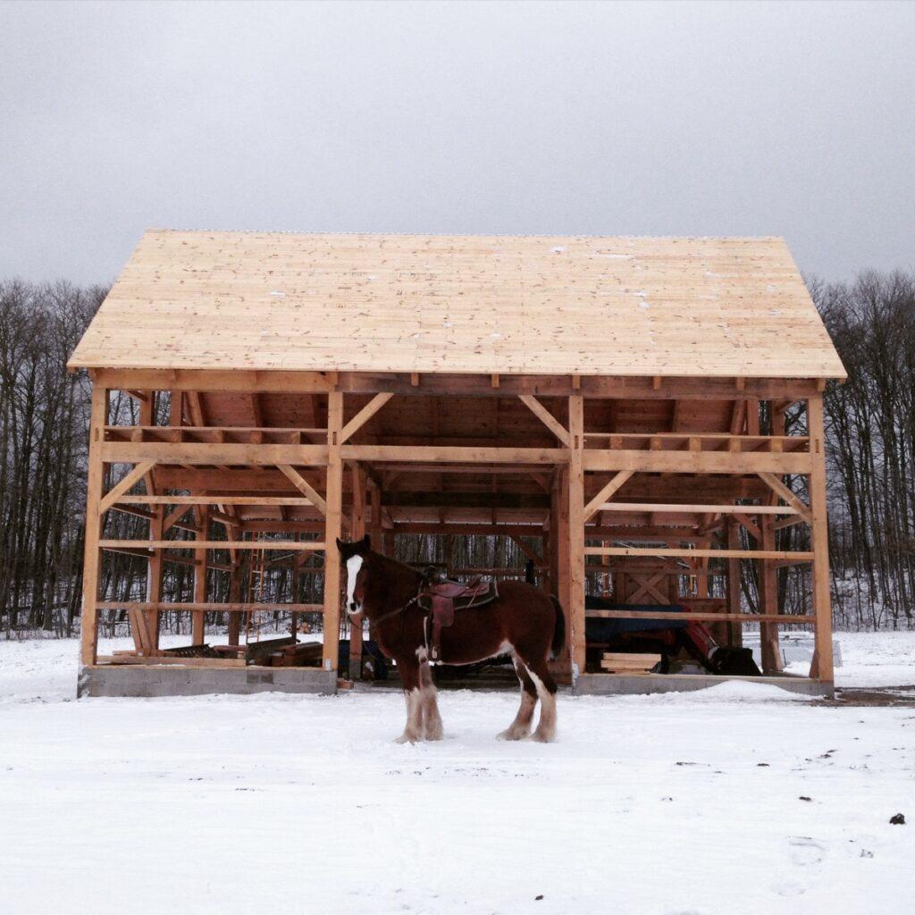 Broken-Back-Saltbox-36×36-in-MI-403D-Horse-Barn-Frame