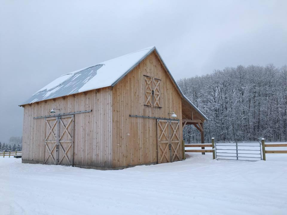 Broken-Back-Saltbox-36×36-in-MI-403H-Horse-Barn